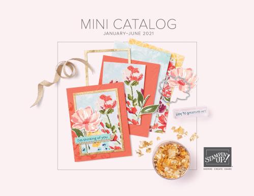 Stampin Up January - June Mini Catalog