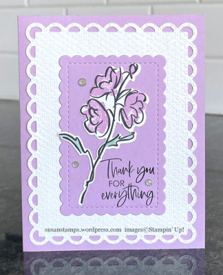 Stampin Up Color & Contour
